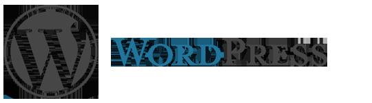ワードプレスのテーマ、カスタマイズ画面にオリジナル要素を追加する。